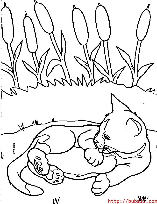 dibujos_para_colorear-kit6bubali
