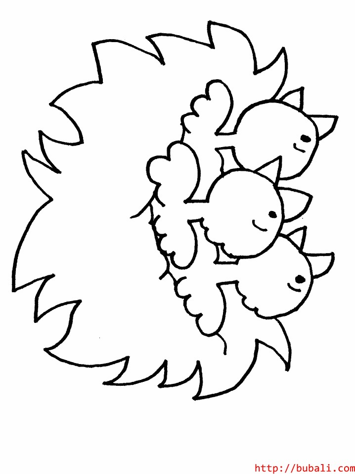 dibujos_para_colorear-chicksbubali