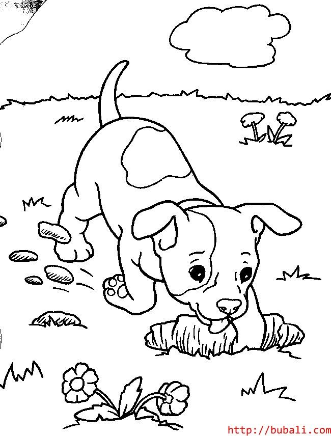 dibujos_para_colorear-pup10bubali