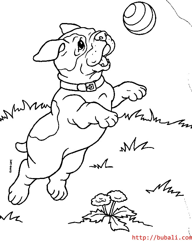 dibujos_para_colorear-pup4bubali