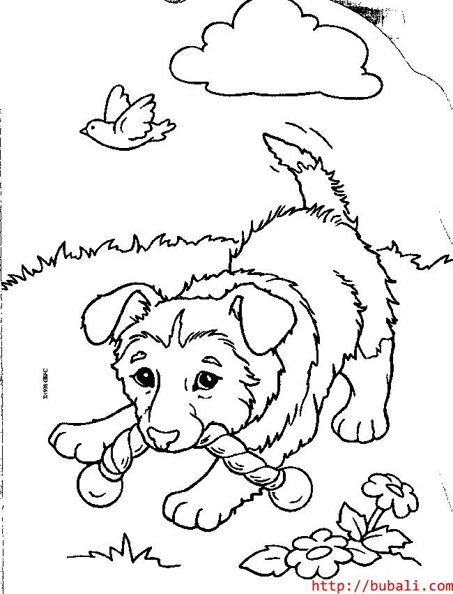 dibujos_para_colorear-pup5bubali