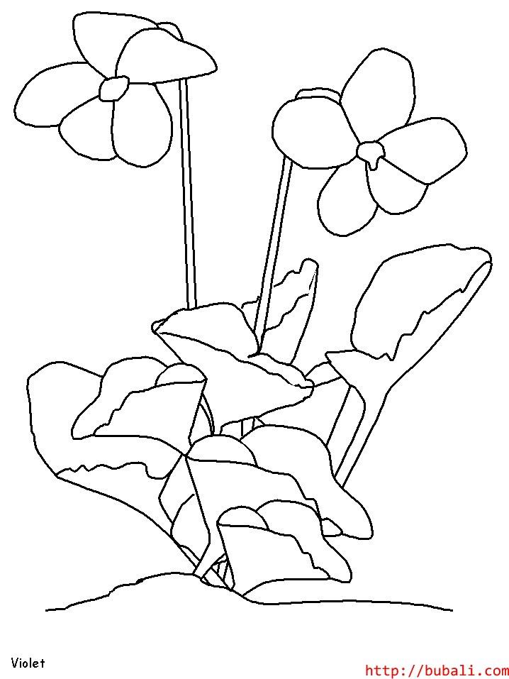 dibujos_para_colorear-2222bubali