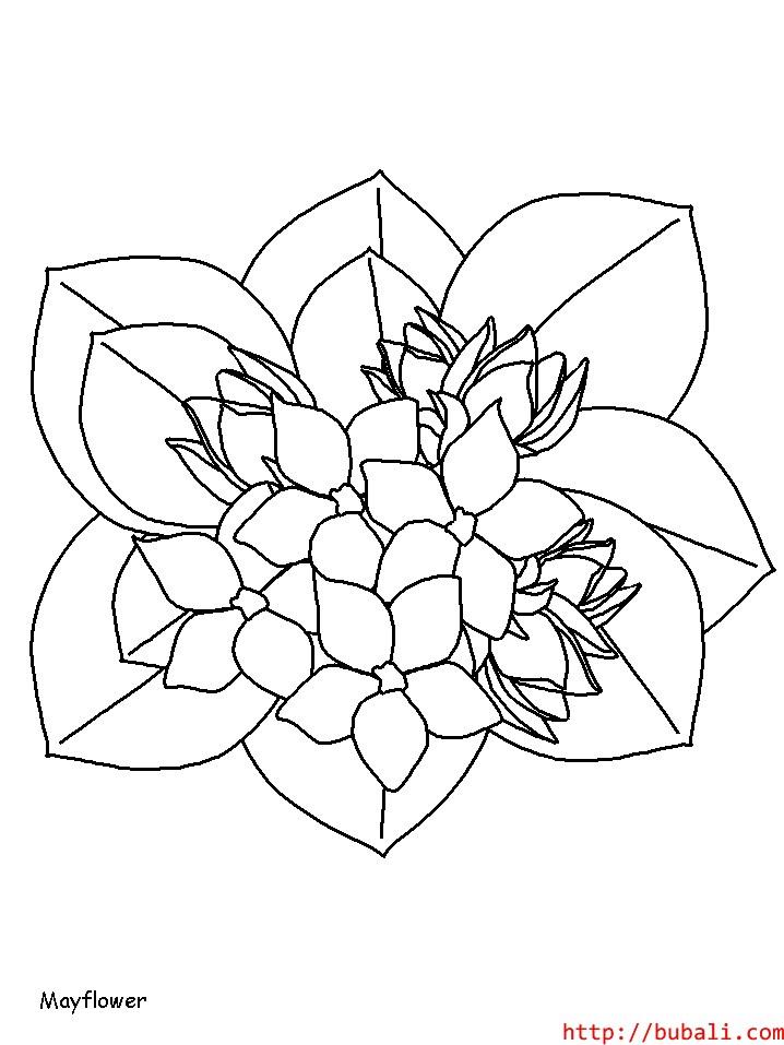 dibujos_para_colorear-7bubali